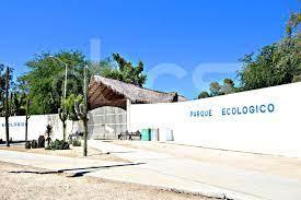 Parque paleontológico de Los Cabos, un paso más cerca de construirse:  Municipio - BCS Noticias